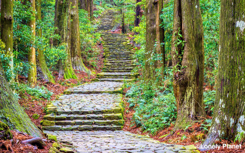 対談企画 #14『熊野の価値とは?』